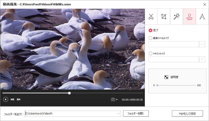 DVD Memory(Windows版)での動画編集-透かしタイプの選択