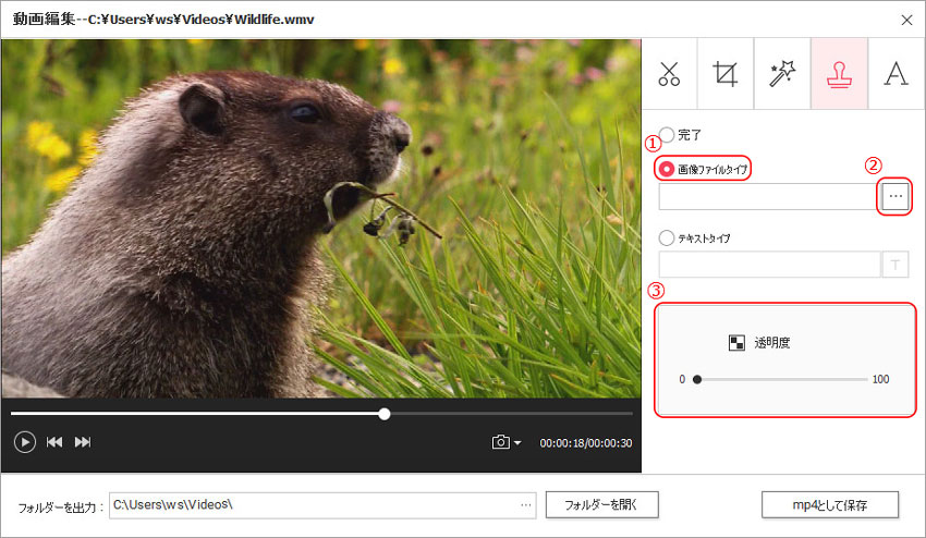 DVD Memory(Windows版)での動画編集-透かし((ウォーターマーク)追加