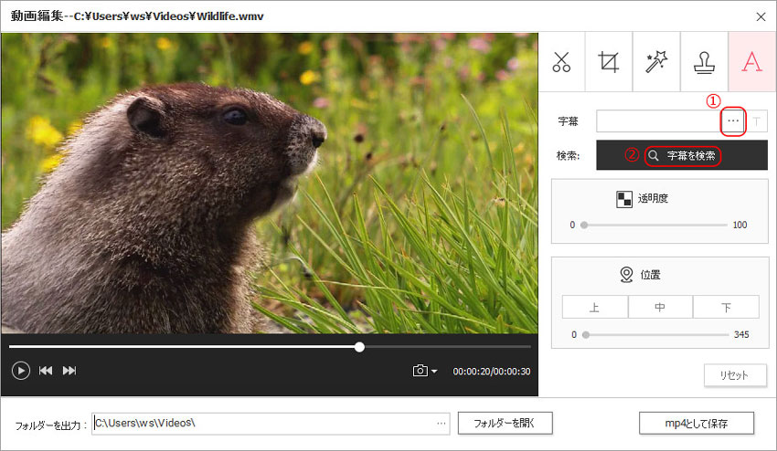 DVD Memory(Windows版)での動画編集-字幕を追加する