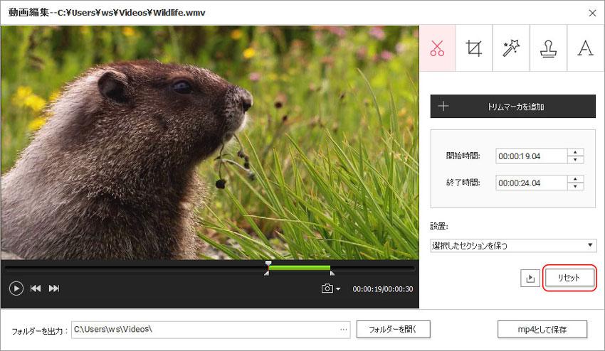 DVD Memory(Windows版)での動画編集-初期値に戻す