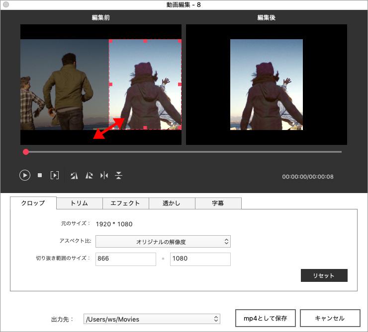 DVD Memoryで動画を編集する方法-クロップ機能